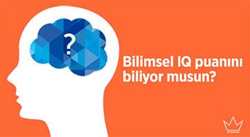 IQ Testi