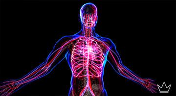 Vücut yaşın kaç? testi